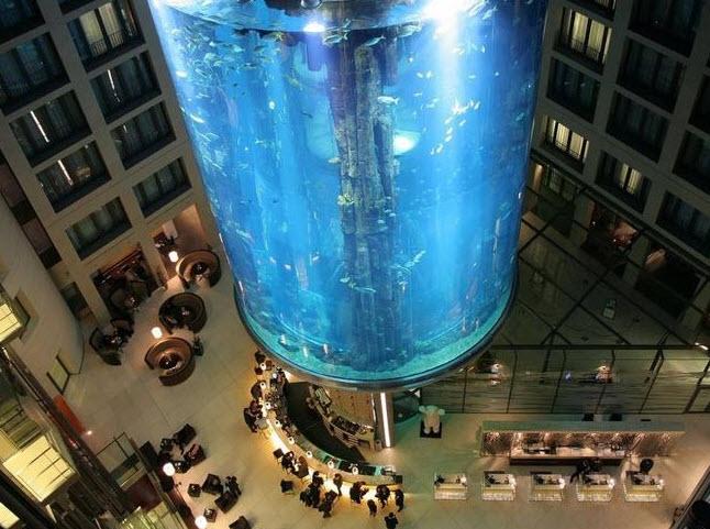 аквариум в Берлине